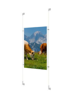 Banff Solvent Photo Glossy PE 240gsm