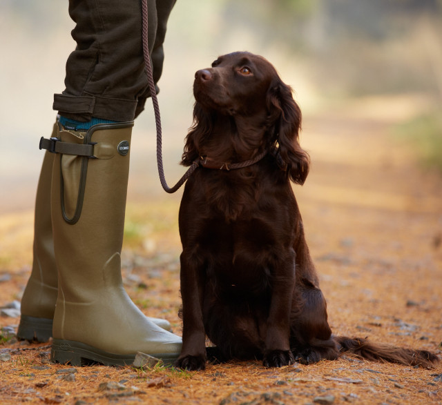 Walkies, Wellingtons, Waterproofs!