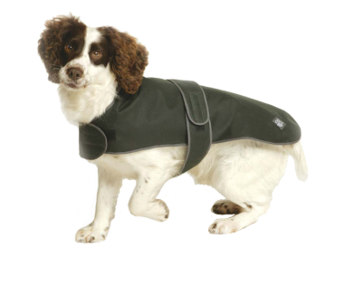 Country Green Waxed Dog Coat