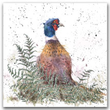 Pheasant and Fern Greetings card (blank)
