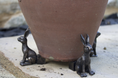Plant Pot Feet - Hare Trio