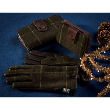 Alan Paine Combrook Ladies Gloves in Juniper