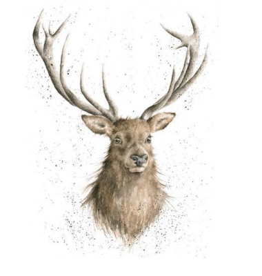 Portrait of a Stag Ltd Mounted Print  by Wrendale Designs