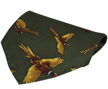 Silk Pocket Square - Green Flying Pheasant