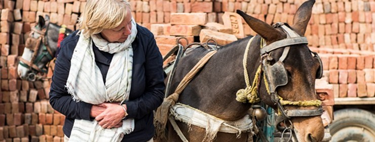 Deborah visits India with animal welfare charity
