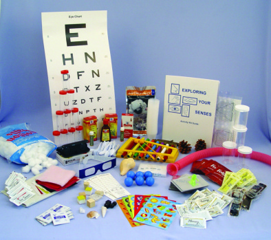 Exploring Your Senses Kit