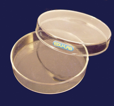 Petri Dish, Glass 90mm (Pk10)