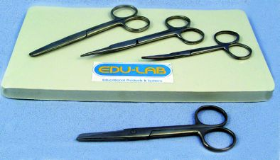 Scissors, Dissecting 125mm s/s - Curved