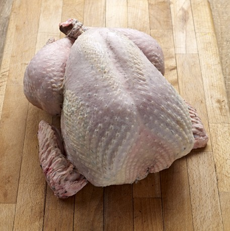 Organic Free Range Turkey - Large