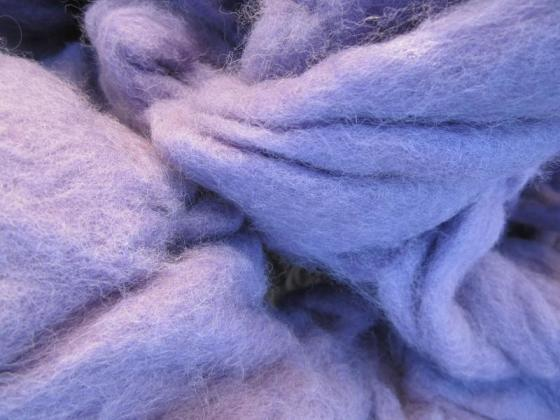 Organic Lleyn Wool fibre - Purple