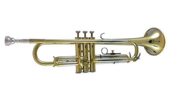 Secondhand Blessing Scholastic Bb Trumpet Lacquer