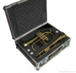 Smith Watkins Trumpet/ Flugel Horn Double Flight Case