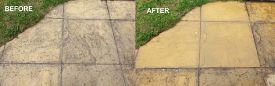 before-after_ltp-black-spot-algae-remover-1