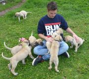 Josh & Pups 5.5weeks 030814 1