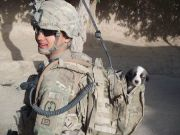 Nowzad soldier-pet-resque-animal-war-18__605
