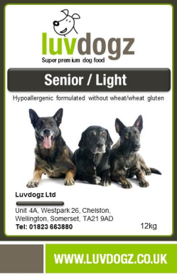 Senior/Light Dog