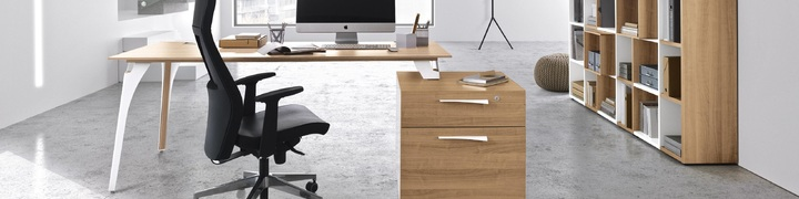Xenon Executive Furniture