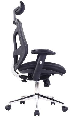 Empuria Mesh Task Chair Side Angle View