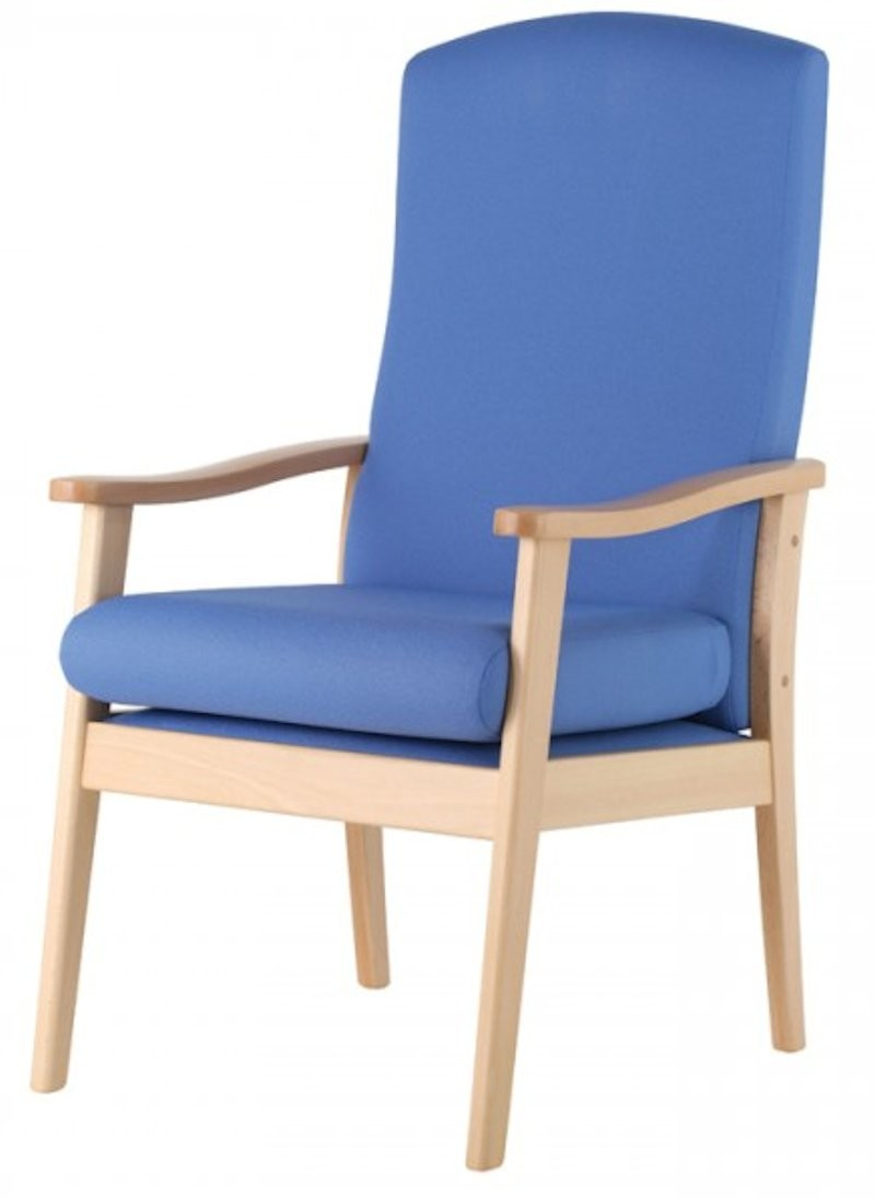 An image of Shrek High Back Armchair