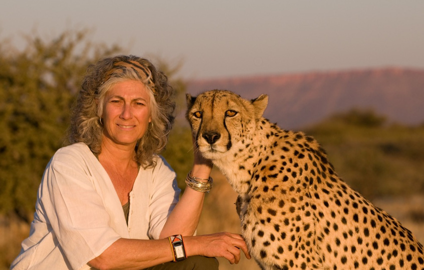 Cheetah Conservation 2