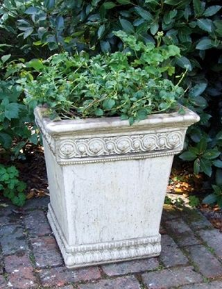 Empire Planter