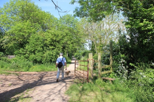 Walker along the mineral line, image by Vicky Banham for Visit Somerset