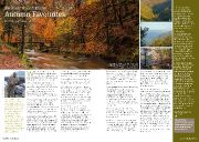 ExMag Julian Gurney's Nature Diary Autumn Favourites as image