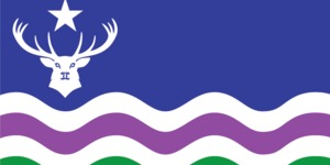 New Exmoor flag unfurled