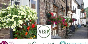 Introducing the Visitor Economy Support Programme (VESP)