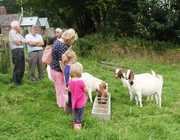 West Country Farm and Food Tours
