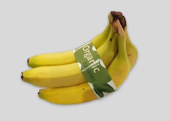 Recyclable Banana Band